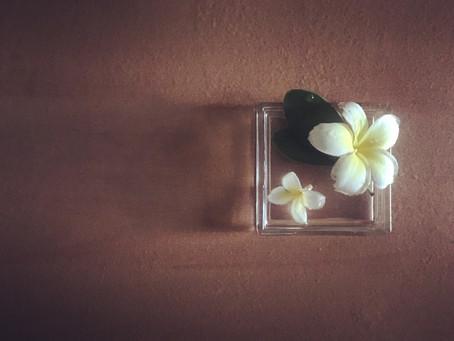 拾花 Falling flowers