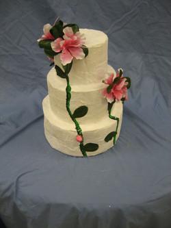 cakesdrums2010 013