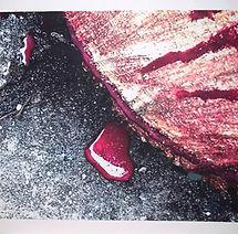Isa Godoy - A natureza sangra.JPG