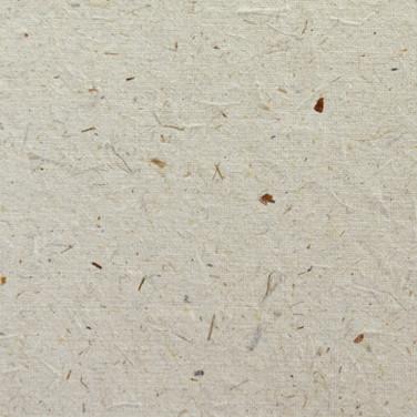 Papel Semente Camomila