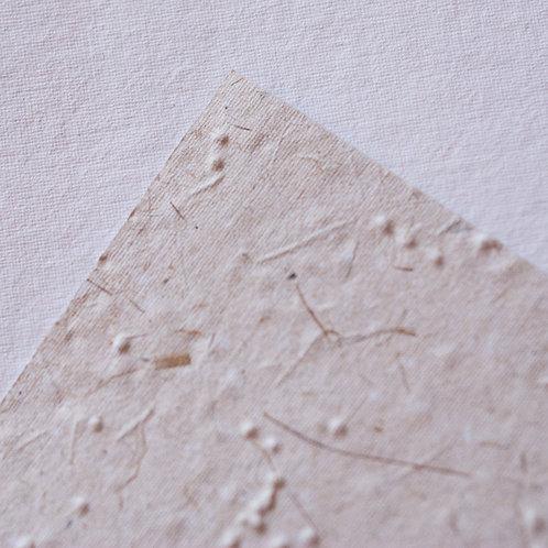 Papel com semente gypsophila, 150g, A4 - pacote a partir de 10 unidades