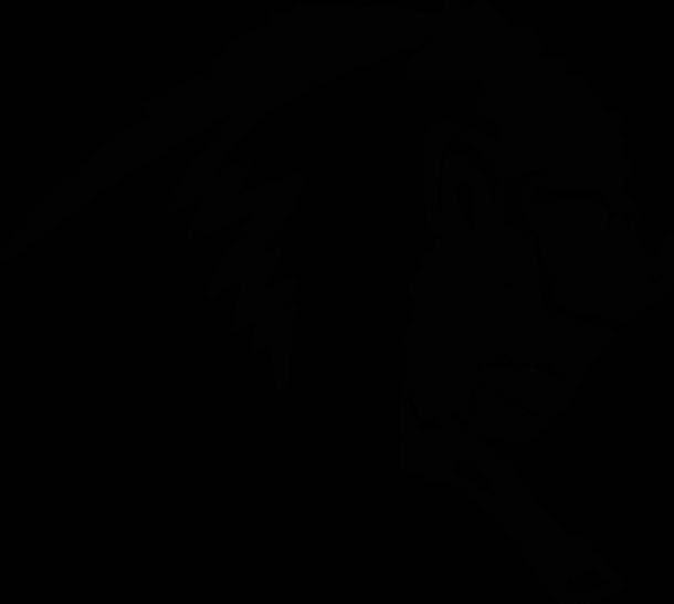 Roam Buffalo(blk).png