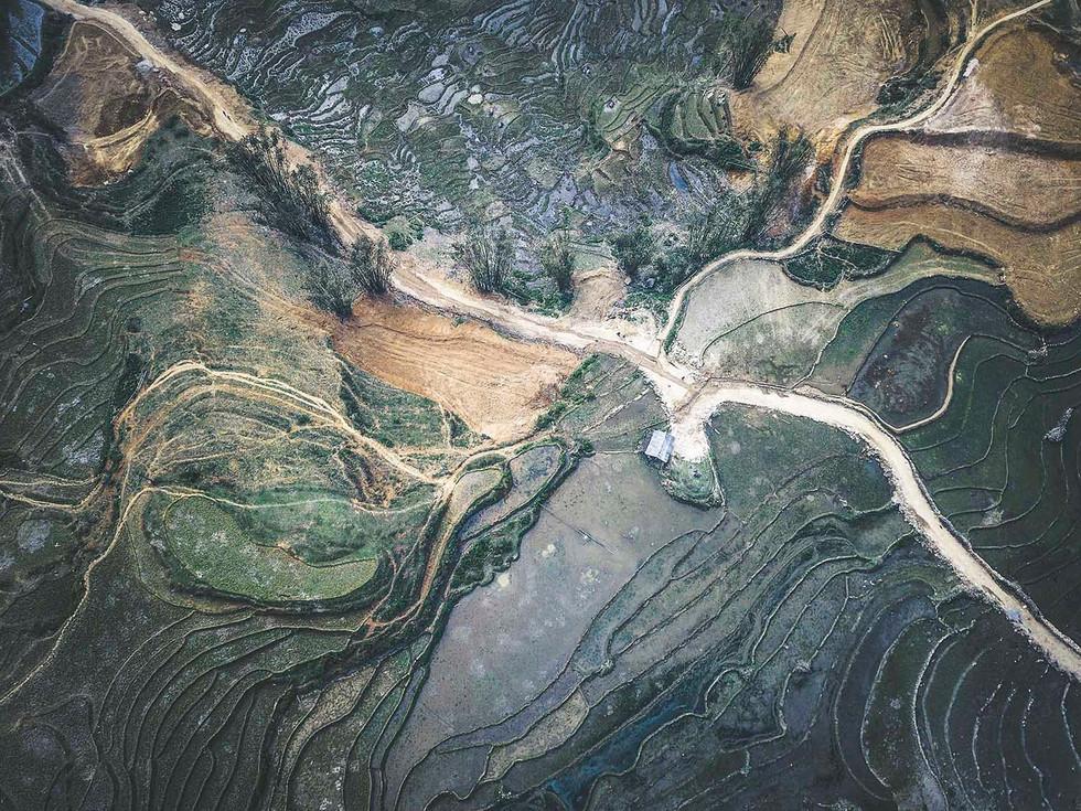 Mangoshake landscape Sapa Vietnam