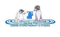Dog Pool Logo 3.jpeg