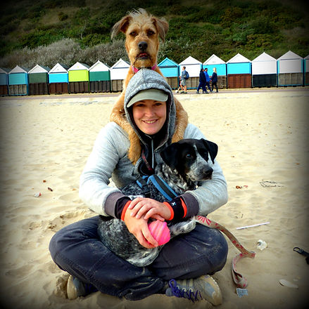 Activity 4 Paws - Dog Trainer Southampton