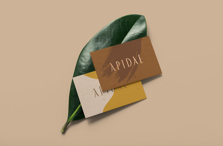 Apidae_THE DOTS_brand_case study_3.jpg