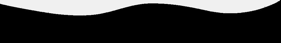 1920 x 300 strip (1).png