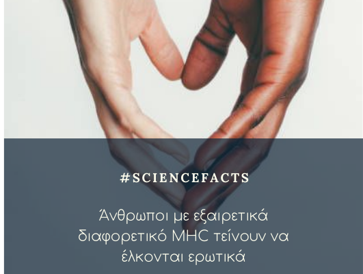 #MHC_fact