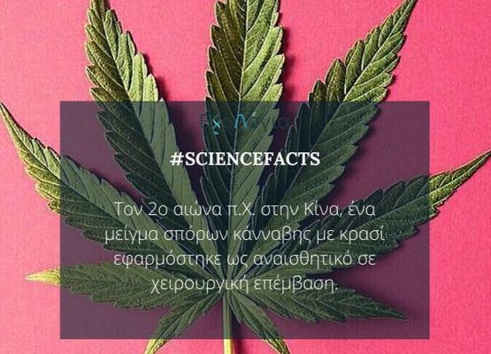 #Cannabis_Fact