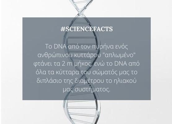 #DNAfact