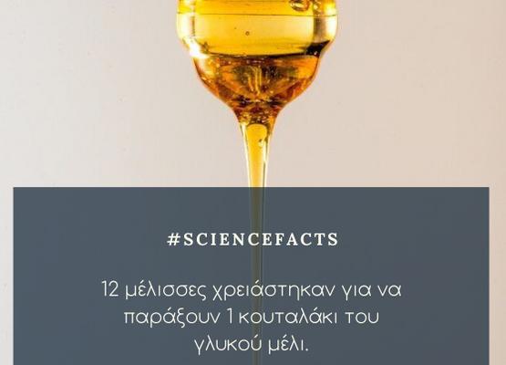 #Honey_Fact