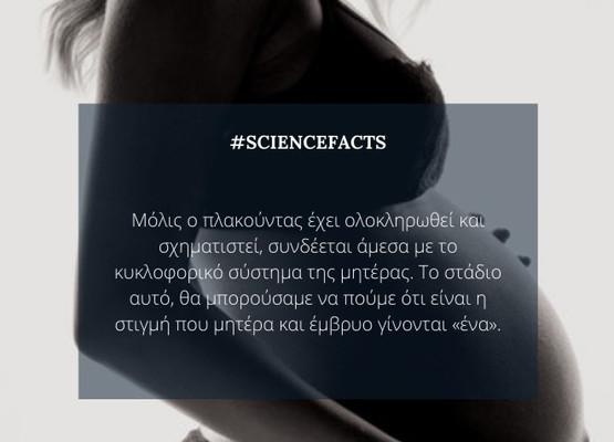 #PregnancyFact