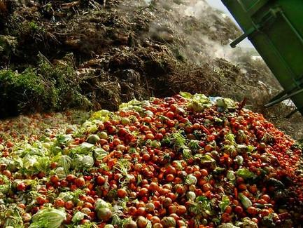 Food Waste: Γιατί να μασάς, χωρίς να πετάς #memiamatia