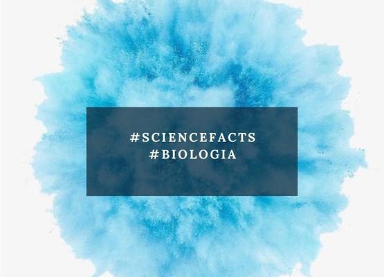#ScienceFacts