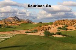 Saurines Golf 2_edited