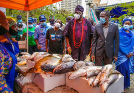 LAGOS WILL ESTABLISH FISH CENTRE TO BOOST PRODUCTION - SANWO-OLU