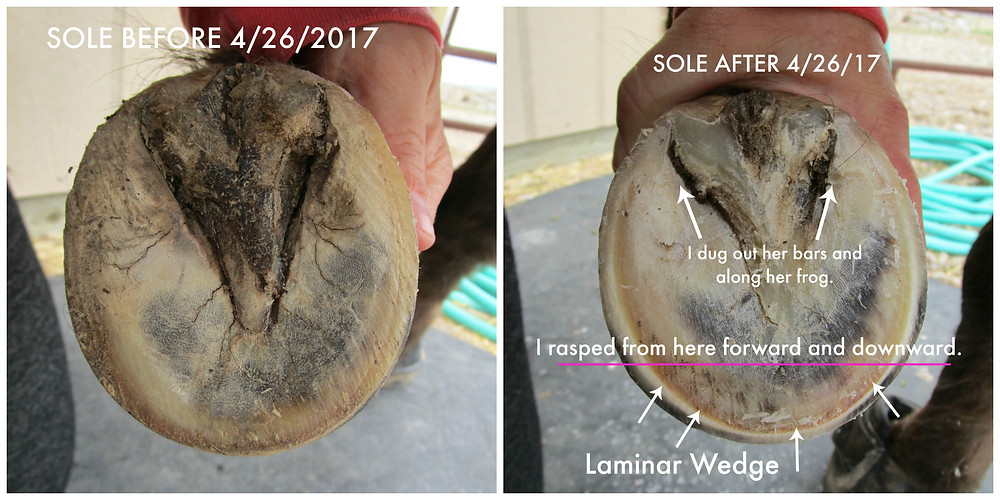 Sole before and after