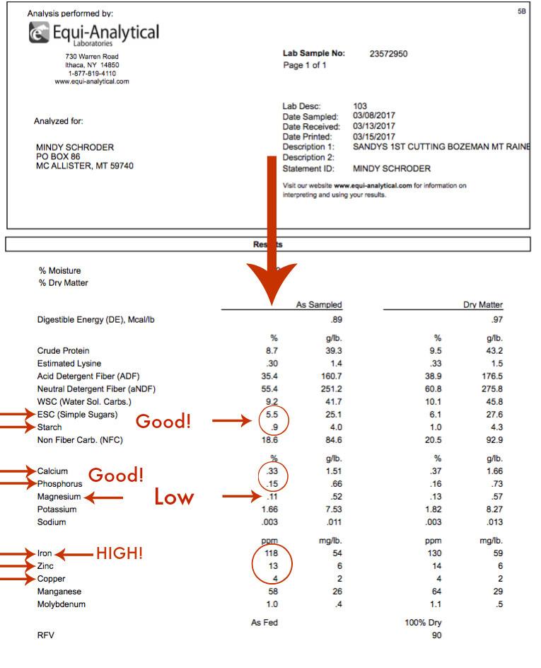 Hay Analysis - www.theessentialhorse.com