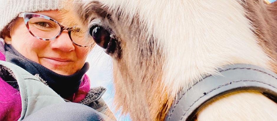 Help! My baby pony is biting!!