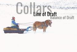 Collars, Line of Draft and Balance of Draft
