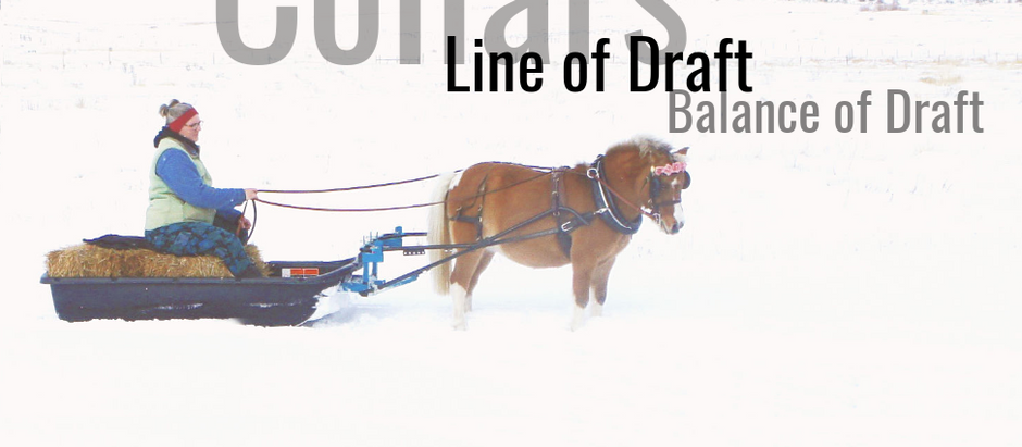 Collars, Line of Draft, Balance of Draft
