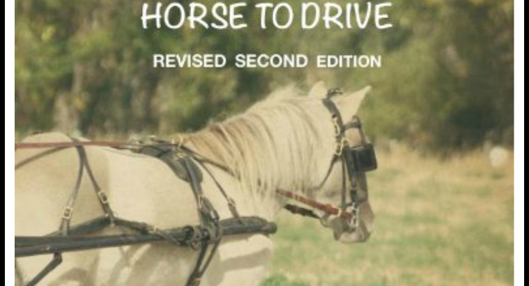 My Driving Book