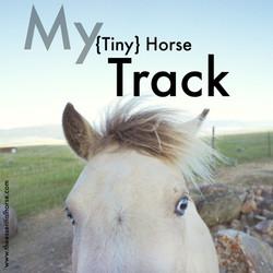 My Tiny Horse Track