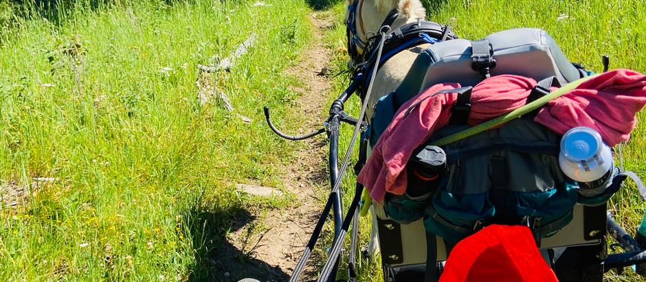 Trail Drive/Hike