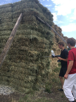 How to gather a hay sample