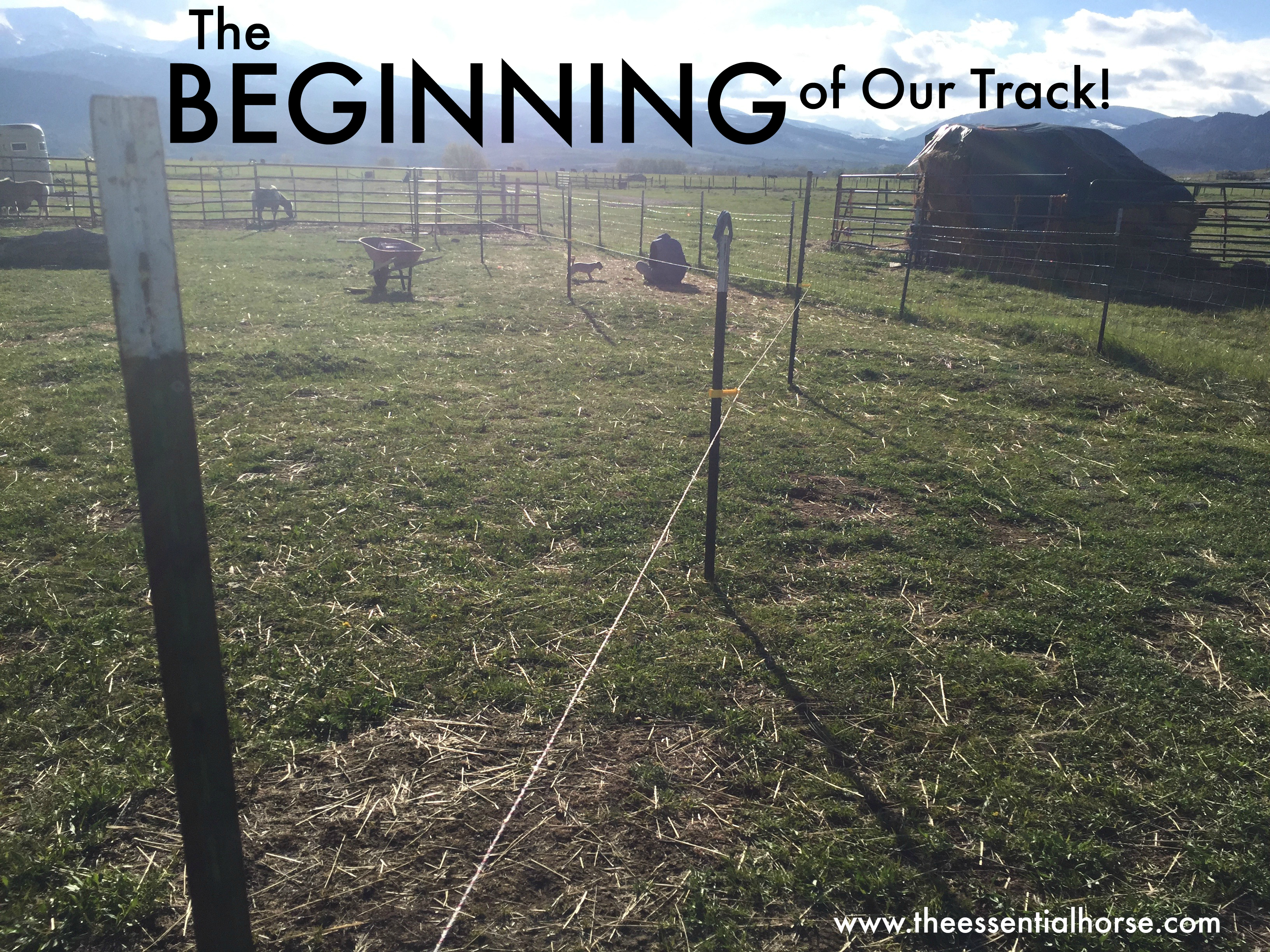 The Beginning of our track!