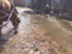 skydrinkingwaterwebsite.jpg