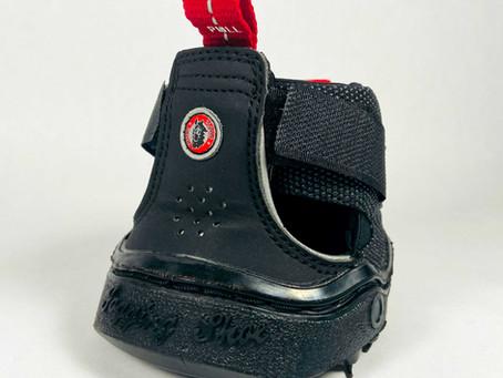 Equine Fusion Trekking Boots