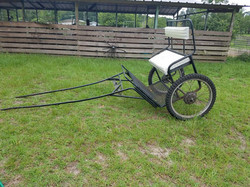 ISO: Miniature or Small Pony Easy Entry Cart