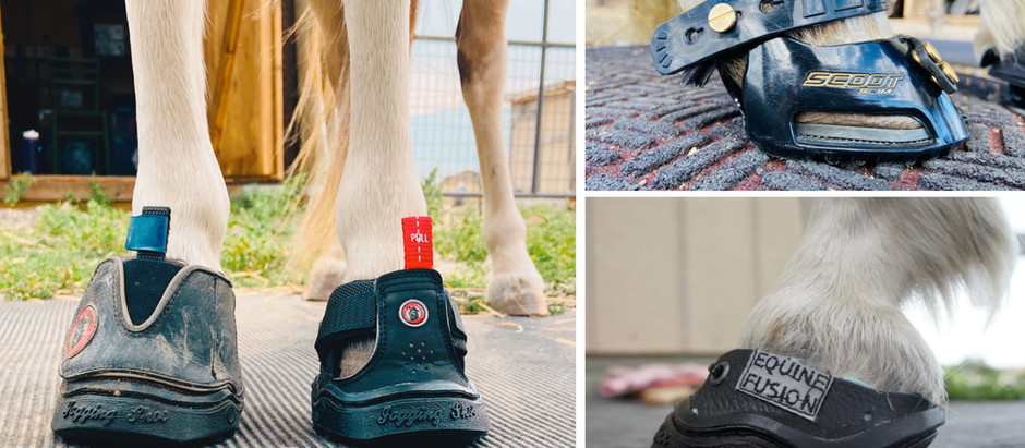 Another Pony Boot/Shoe Comparison