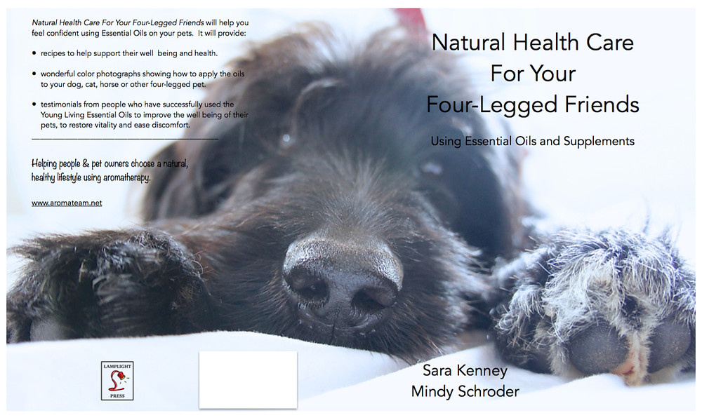 Natural Health Care for Your Four-Legged Friends