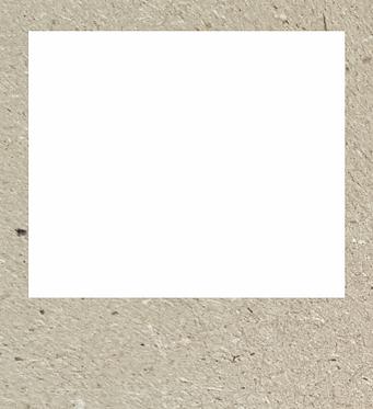 Πολαρόιντ 600-132