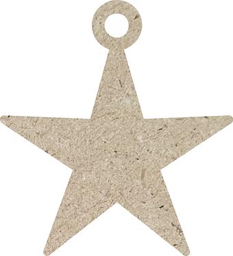 Αστέρι Στολίδι 700-155