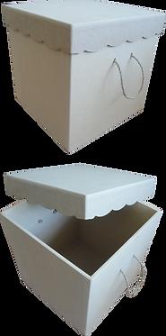 Μπαούλο με καπάκι κουμπωτό 000-103
