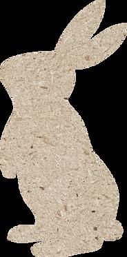 Κουνελάκι 3
