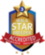 Camden Lane WALA Star Logo-0619-00745.pn
