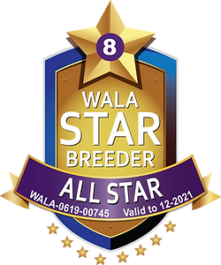 Camden Lane WALA All Star Logo 2021.png