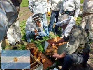 El Programa Nacional de Apicultura en la zona de INTA Bordenave