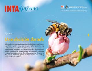 INTA Informa - Apicultura - Una Decisión dorada