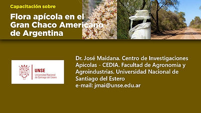 5- Tarjeta Jose Maidana.jpg