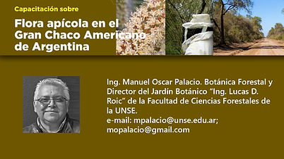 4- Tarjeta Manuel Oscar Palacio.jpg
