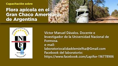 3- Tarjeta Victor Manuel Davalos.jpg