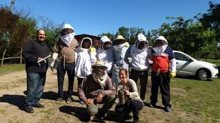 INTA Avellaneda: Tras el ABC de la apicultura