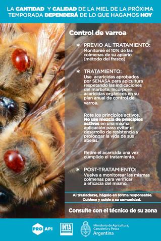 Monitoreo de varroa