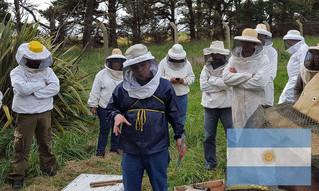 La sanidad de las abejas: segundo curso del CEBASEV en la Unidad Integrada Balcarce