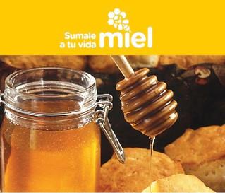 Campaña federal para promover la apicultura y el consumo de miel